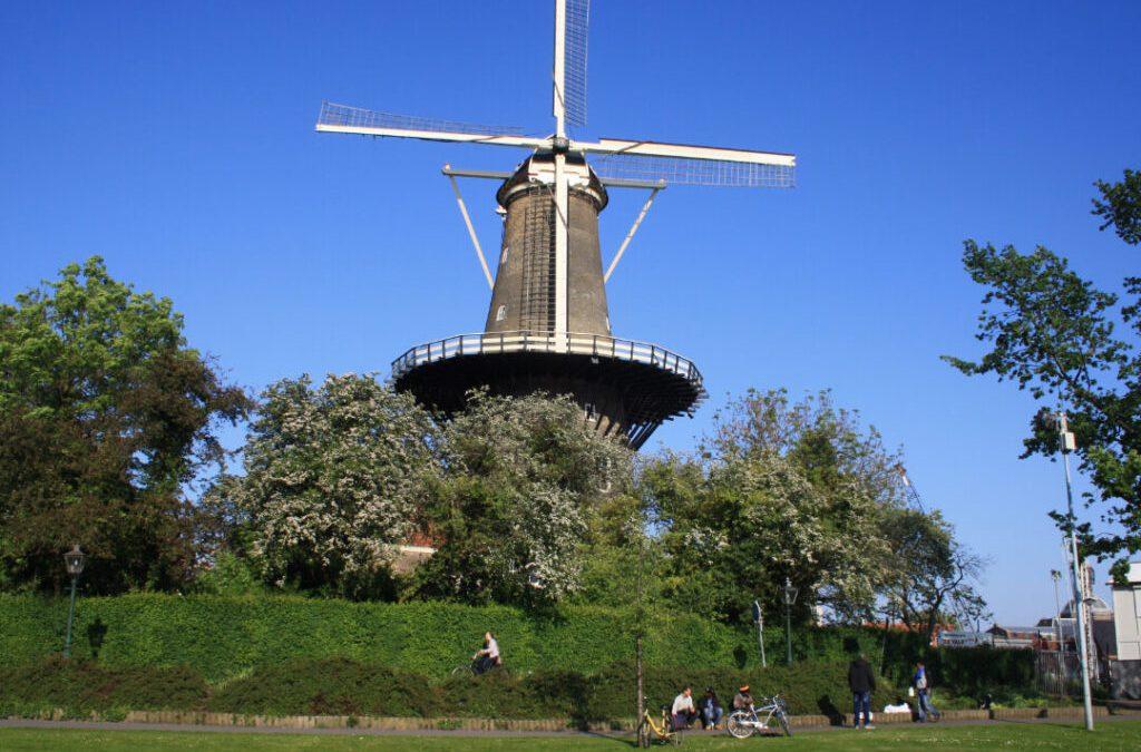Leiden-afb-1